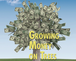 Growing_Money